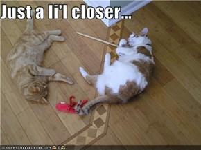 Just a li'l closer...
