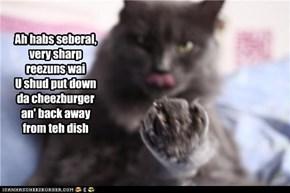 Ah habs seberal, very sharp reezuns wai U shud put down da cheezburger an' back away from teh dish