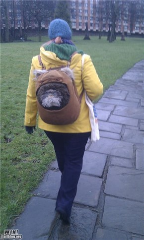 Ewok Backpack WIN