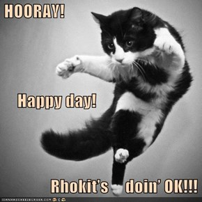 HOORAY!      Happy day!                Rhokit's     doin' OK!!!