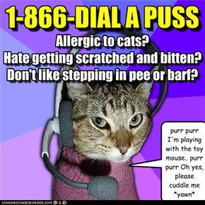 Allergic to cats? Hate getting scratched and bitten? Don't like stepping in pee or barf?