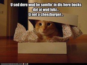 U sed dere wud be sumfin' in dis here bocks dat ai wud lubz... Iz not a cheezburger...