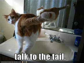 talk to the tail.