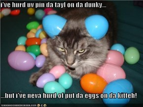 i've hurd uv pin da tayl on da dunky...  ...but i've neva hurd of put da eggs on da kitteh!
