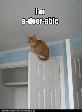 I'm a-door-able