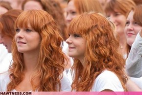 The day of many gingers