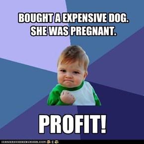 Profit!