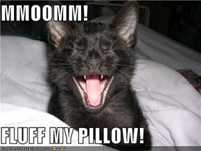 MMOOMM!  FLUFF MY PILLOW!