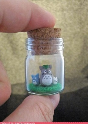 Totoro Preserves