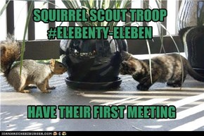 SQUIRREL SCOUT TROOP #11-11