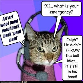 911.. what is your emergency?