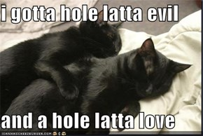 i gotta hole latta evil  and a hole latta love