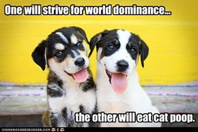 One will strive for world dominance...