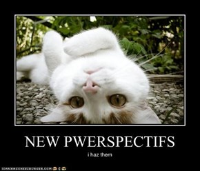 NEW PWERSPECTIFS