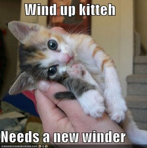 Wind up kitteh  Needs a new winder