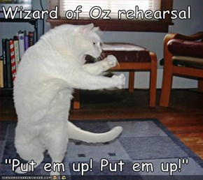 "Wizard of Oz rehearsal  ""Put em up! Put em up!"""