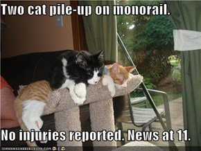 Two cat pile-up on monorail.  No injuries reported. News at 11.