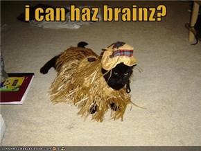 i can haz brainz?
