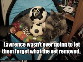 Lawrence wasn't ever going to let them forget what the vet removed..