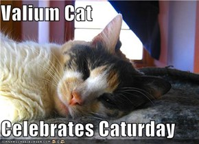 Valium Cat  Celebrates Caturday