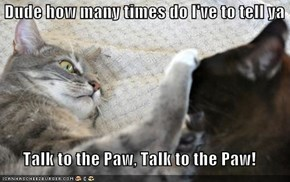 Dude how many times do I've to tell ya  Talk to the Paw, Talk to the Paw!