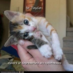 Dr. TinyCat cyoorz depresshunz