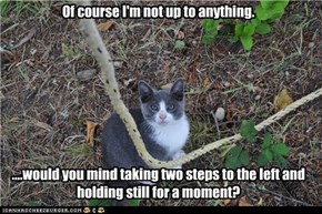Of course I'm not up to anything.           ....would you mind taking two steps to the left and holding still for a moment?