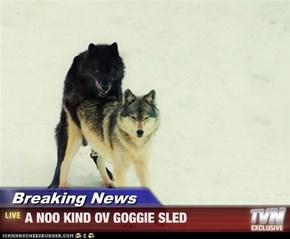 Breaking News - A NOO KIND OV GOGGIE SLED