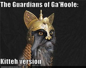 The Guardians of Ga'Hoole:  Kitteh version