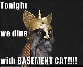 Tonight  we dine with BASEMENT CAT!!!!