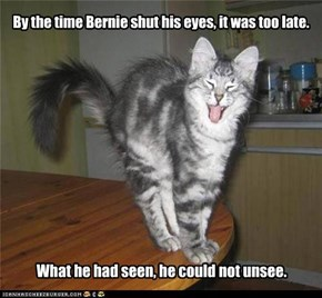 By the time Bernie shut his eyes, it was too late.