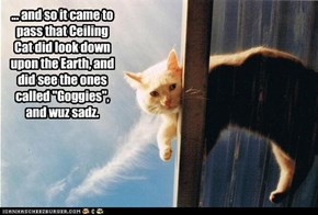 "... and so it came to pass that Ceiling Cat did look down upon the Earth, and did see the ones called ""Goggies"", and wuz sadz."