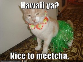 Hawaii ya?  Nice to meetcha.