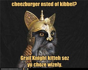 cheezburger nsted of kibbel?