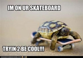 IM ON UR SKATEBOARD... TRYIN 2 LOOK COOL!!!