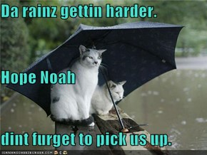 Da rainz gettin harder. Hope Noah dint furget to pick us up.