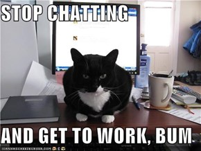 STOP CHATTING  AND GET TO WORK, BUM