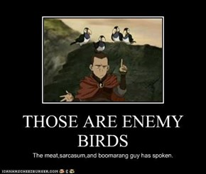 THOSE ARE ENEMY BIRDS