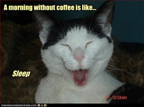 A morning without coffee is like...
