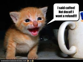 I said coffee! Not decaf! I want a refund!!!