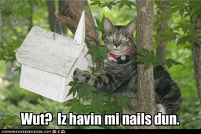 Wut?  Iz havin mi nails dun.