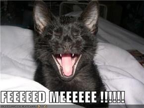 FEEEEED MEEEEEE !!!!!!