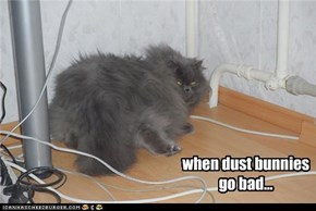when dust bunnies  go bad...
