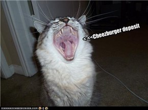 < <<Cheezburger deposit