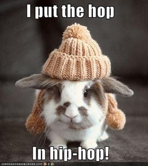 I put the hop  In hip-hop!