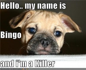 Hello.. my name is  Bingo and i'm a Killer