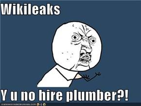 Wikileaks  Y u no hire plumber?!