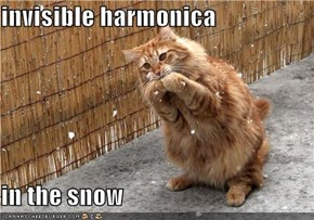 invisible harmonica  in the snow