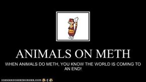 ANIMALS ON METH
