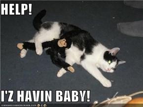 HELP!  I'Z HAVIN BABY!